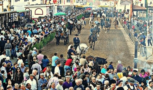 National Horse Fair Since 1571, in Golegã