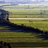 Ribatejo, Three Natural Regions