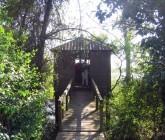The Natural Reserve of Paúl do Boquilobo, in Golegã